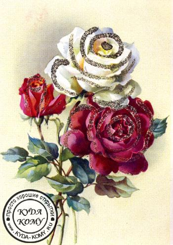 Самые красивые фото цветов и букетов